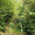 al wandelend kwamen we langs dit schitterende watervalletje (als je goed kijkt kun je zien dat het een vrij hoge waterval is)